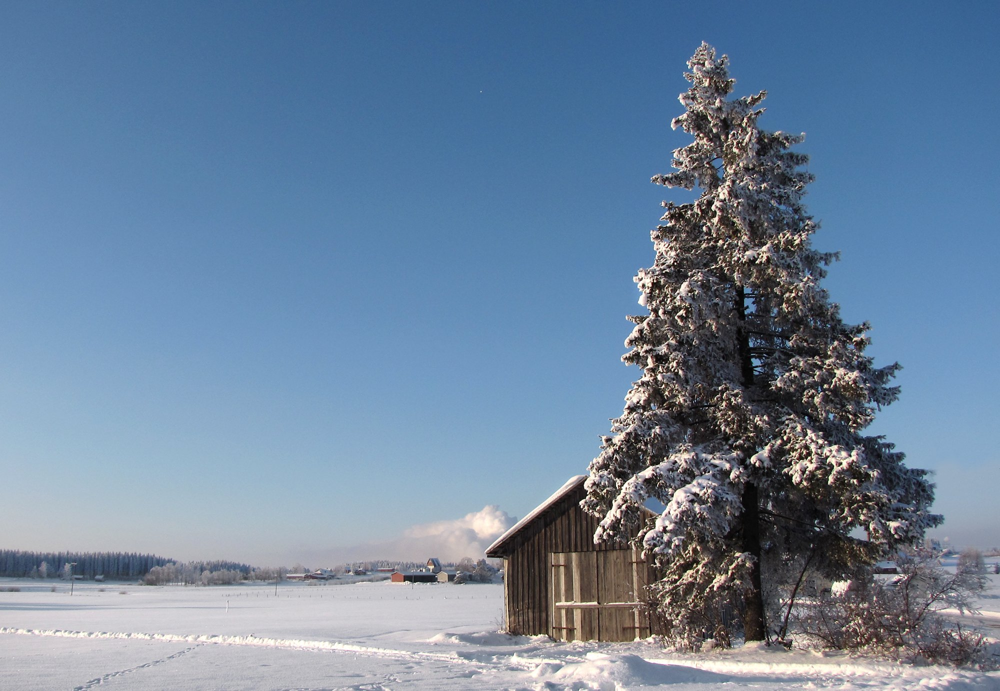 DDoS attack knocks out Finnish heating - DCD