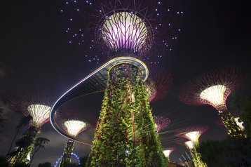 Singapore Gardens by the Bay.jpg